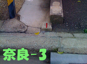 Nara3siphone3g_375