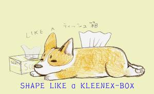 Shapelikeakleenexbox201105071058561