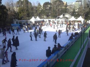 Iceskate1050162