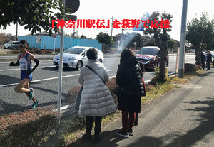 S2skanagawa_5174