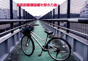 7inakasyouwabasidscf0644